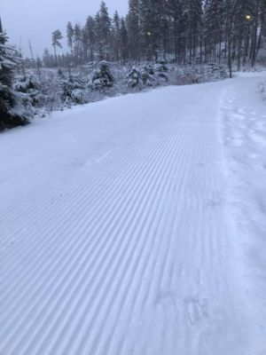 ski11jan2 300
